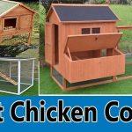 best-chicken-coops